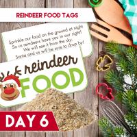 reindeer-food